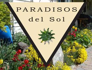 paradisosdelsol.com